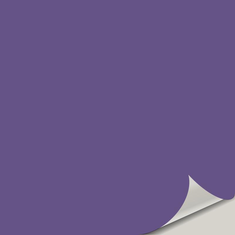 African Violet SW 6982