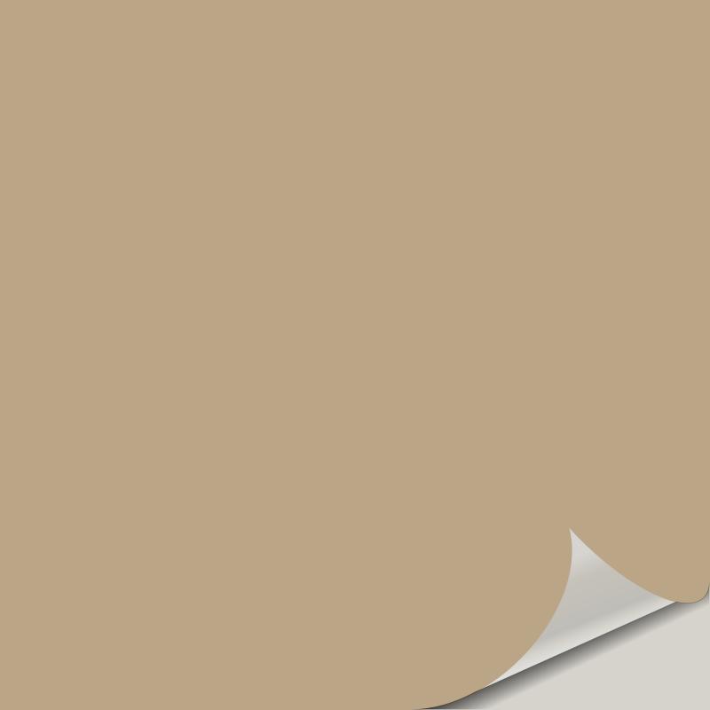 Latte SW 6108